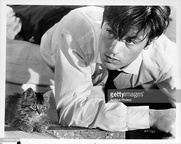 Tiny kitten keeps Alain Delon company after he finds himself made a prisoner in a scene from the film 'The Love Cage', 1964.