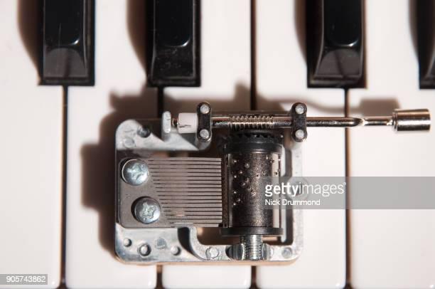 Tiny music box on piano keys