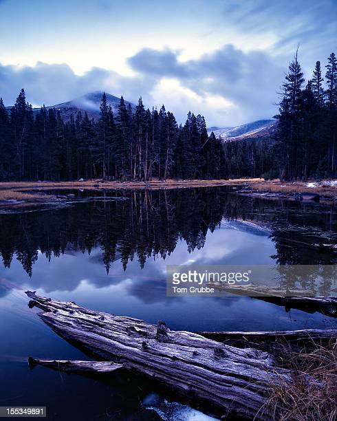 Tioga Pass Lake Reflection