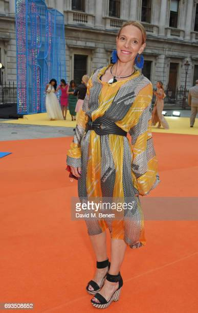 Tiphaine de Lussy attends the Royal Academy Of Arts Summer Exhibition preview party at Royal Academy of Arts on June 7, 2017 in London, England.