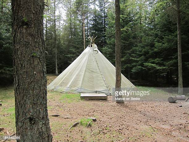 tipi tent in a forest - teepee stock pictures, royalty-free photos & images