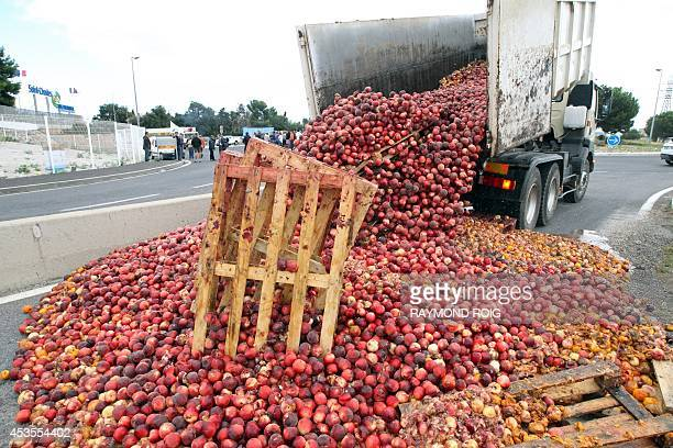 A tipper lorry dumps nectarines and pallets during a protest by farmers to block access to the SaintCharles International market one of Europe's main...