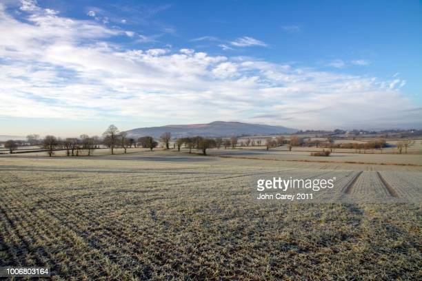 Tipperary Farmland on a frosty winter's morning