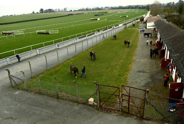 IRL: Horse Racing from Clonmel