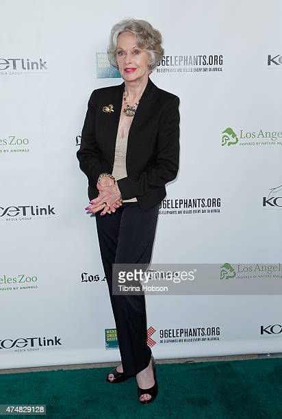 Tippi Hedren attends the premiere of 'Illicit Ivory' hosted by Tippi Hedren at Los Angeles Zoo on May 26 2015 in Los Angeles California