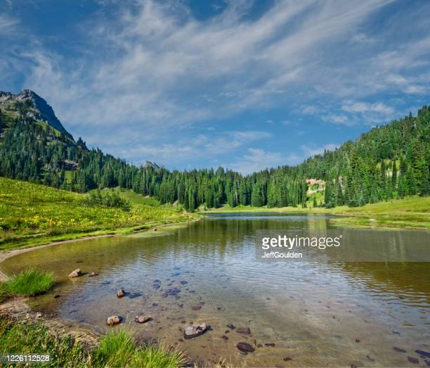tipsoo lake and meadow - jeff goulden stock pictures, royalty-free photos & images