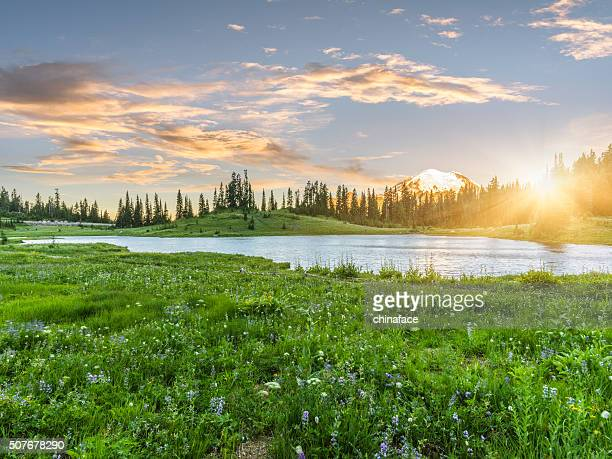 tipsoo lake of mt.rainier - sunset lake stock photos and pictures
