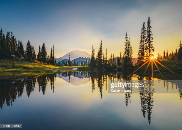 tipsoo lake on sunset with a reflection of mt. rainier, washington - clima alpino foto e immagini stock