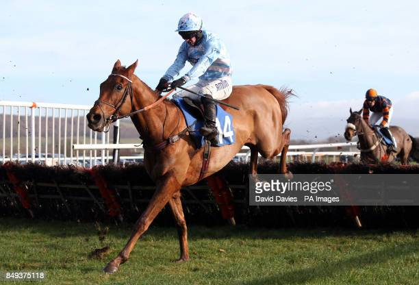 Tiqris ridden by Tom O'Brien in the Jenny Appleton & Family Maiden Hurdle at Ludlow