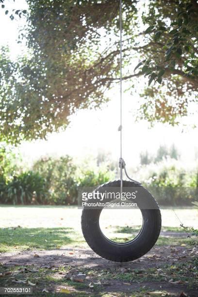 tire swing hanging from tree branch - schommelen bungelen stockfoto's en -beelden
