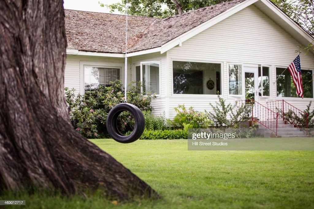 Tire Swing Hanging In Backyard : Stock Photo