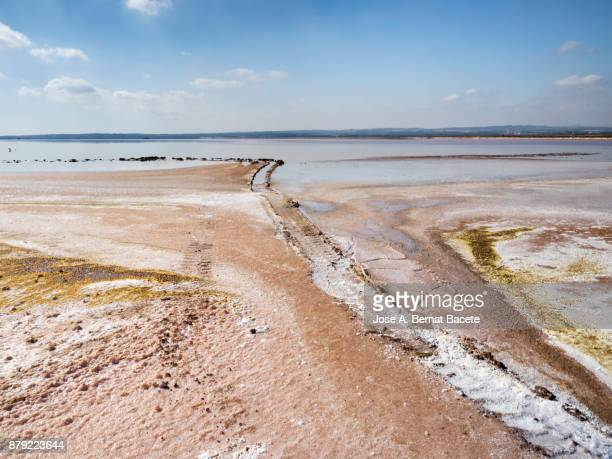 Tire Track of a truck on the shore of a lake. Blue sky with white clouds reflected over calm water of a salty lake with pink background in salt mines of Torrevieja, Alicante, Spain