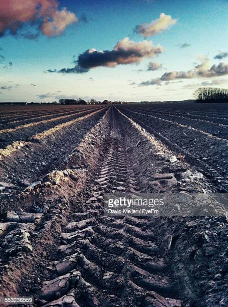 Tire Track On Agricultural Field