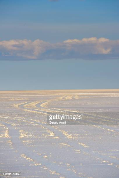 Tire tracks at Uyuni Salt Flats