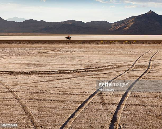 Tire tracks crisscrossing the surface on the Bonneville Salt Flats during speed week. A motorcyclist riding along a track.