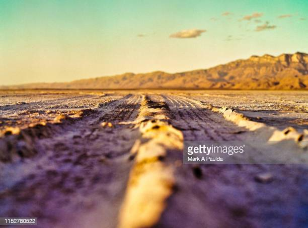tire tracks in the sand - salt flat stock pictures, royalty-free photos & images