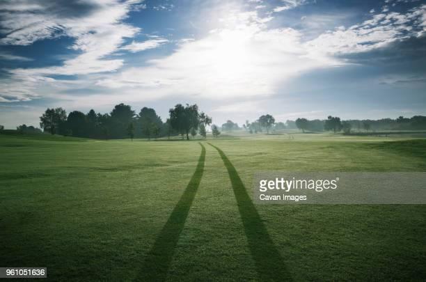 tire tracks on golf course against sky on sunny day - spoor vorm stockfoto's en -beelden