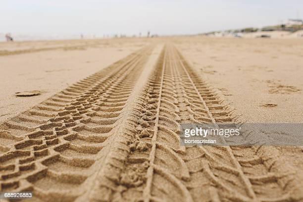 tire tracks on sand at beach - bortes stock-fotos und bilder