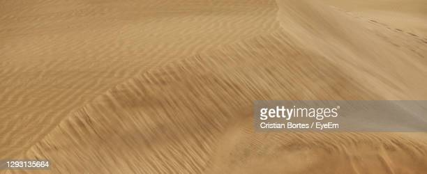 tire tracks on sand - bortes stock pictures, royalty-free photos & images
