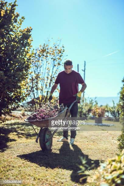 müde gärtner treibt eine schubkarre - unterschicht stereotypen stock-fotos und bilder