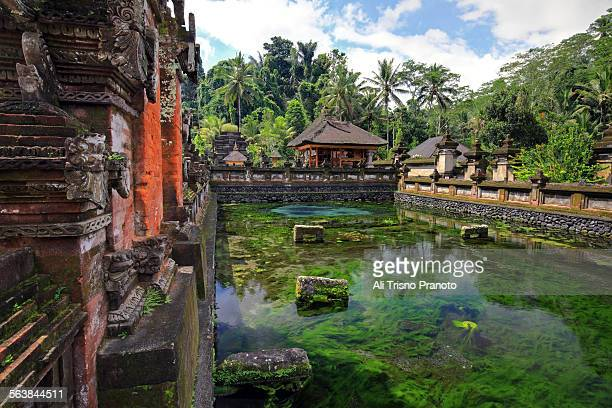 tirta empul temple in bali - pura tirta empul temple stock pictures, royalty-free photos & images