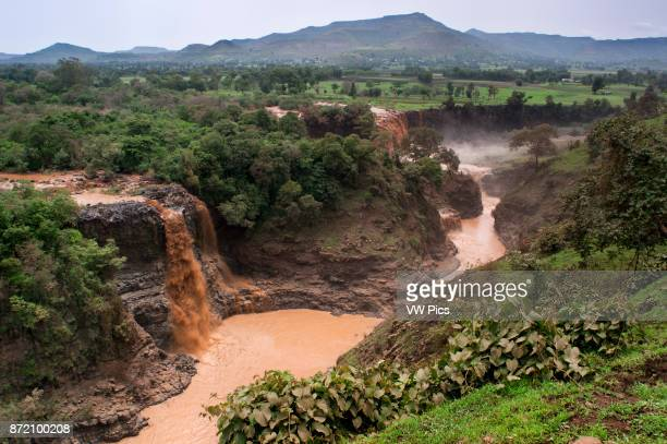 Tis Isat or Blue Nile waterfalls Bahar Dar Ethiopia Africa Tis Isat the Blue Nile Falls In the huge and beautiful lake Tana there is the birth of the...