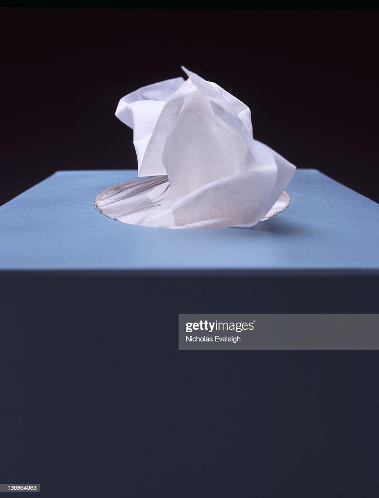Tissue box : Foto de stock