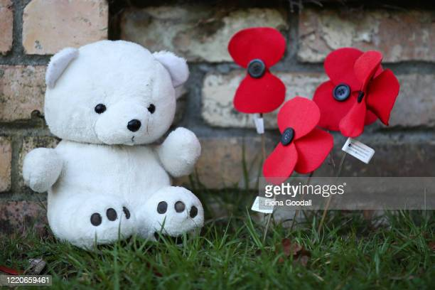 Titirangi teddy bear is joined by homemade poppies to commemorate Anzac Day on April 24 2020 in Auckland New Zealand New Zealanders are preparing to...