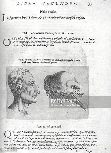 Title page portrait of the author from 'De humana physiognomonia libri IIII'; By Giambattista della Porta , also known as Giovanni Battista Della...