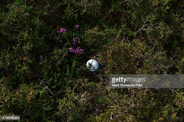 Titleist no3 golf ball by James Byrne of Scotland in the thick heather during the final qualifying for the Open Championship at Gailes Links Golf...