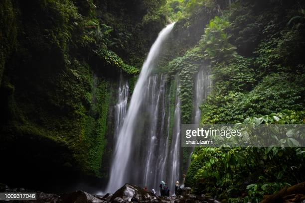 tiu kelep is stunning waterfalls on the north side of lombok, indonesia. an amazing place to hike, swim, and spend your holiday. - shaifulzamri stockfoto's en -beelden