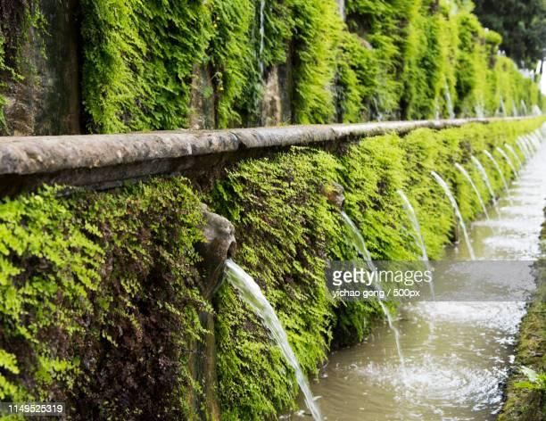 tivoli's spring - nikko city stock pictures, royalty-free photos & images