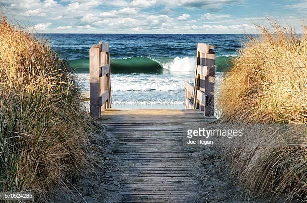 to beach - halifax nova scotia stock pictures, royalty-free photos & images
