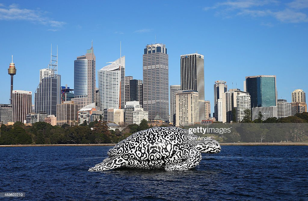 Gigantic Sea Turtle Sculpture Floats Past Sydney Harbour Bridge and Sydney Opera House : Fotografia de notícias