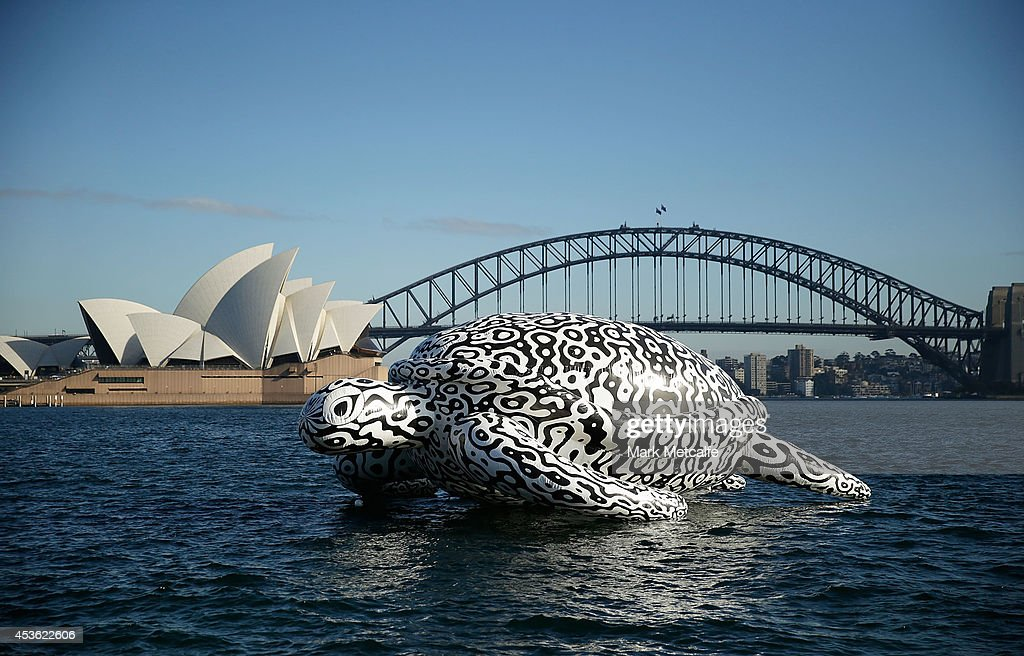 To celebrate the World's First Undersea Art Exhibition, a 5 metre tall, 15 metre long Sea Turtle cruises past Sydney Harbour at Mrs Macquarie's Chair on August 15, 2014 in Sydney, Australia.