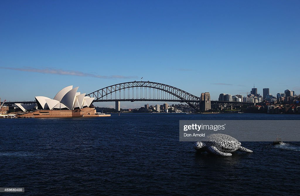 Gigantic Sea Turtle Sculpture Floats Past Sydney Harbour Bridge and Sydney Opera House : News Photo