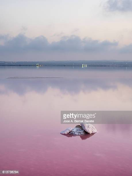 To get dark on a lagoon of salty water of pink color with the water in calmness and a small island