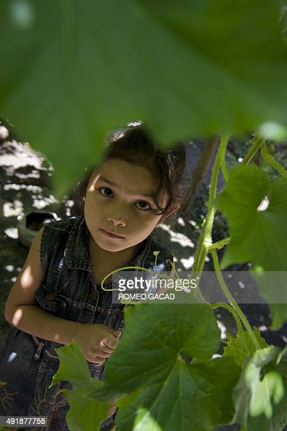 To go with Indonesia-environment-energy FEATURE by Angela Dewan In this photograph taken on March 20 seven year old Sumbanese girl Gerarda Malarani...