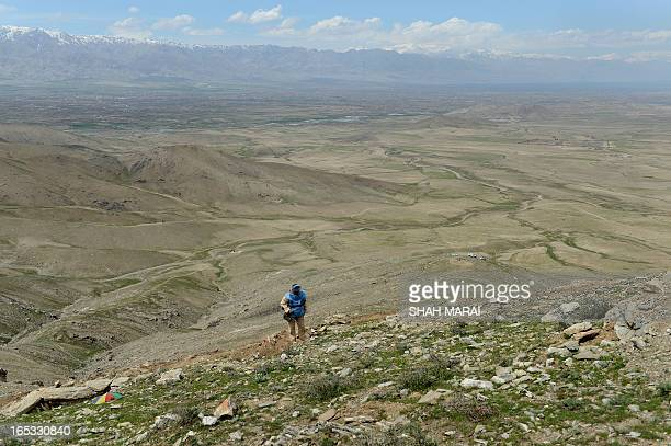 To go with story 'AfghanistanconflictminesFEATURE' by Joris Fioriti An Afghan deminer clears mines from a field in Sangaw village on the outskirts of...