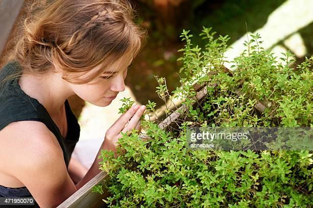 植物の庭園には、明日である