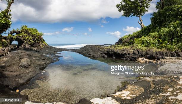 to sua rock pools - apia stock photos and pictures