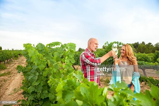 Pain grillé parmi les vignobles