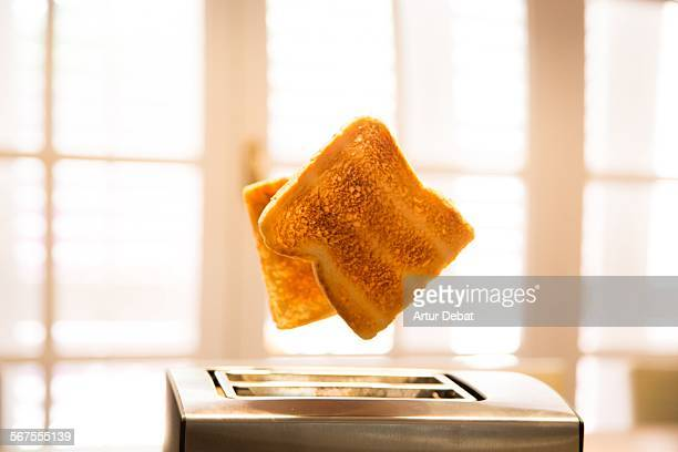 Toast jumping from toaster on morning breakfast.