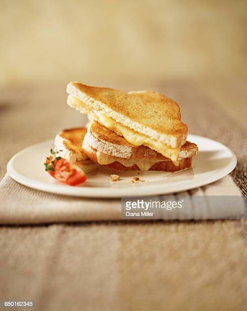 Toasted cheese sandwich with tomato slice on plate