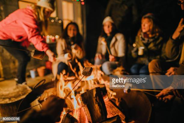 toasting marshmallows on the fire - fire pit stock pictures, royalty-free photos & images