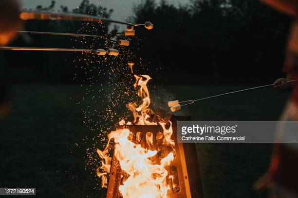 toasting marshmallows over a fire pit at dusk - fork stock pictures, royalty-free photos & images
