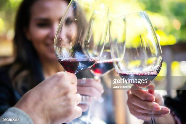 toasting - sonoma county stock pictures, royalty-free photos & images
