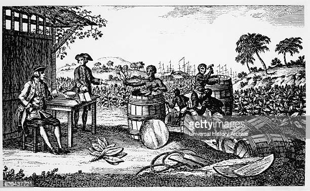 Tobacco Being Exported from Jamestown Virginia Engraving 1620