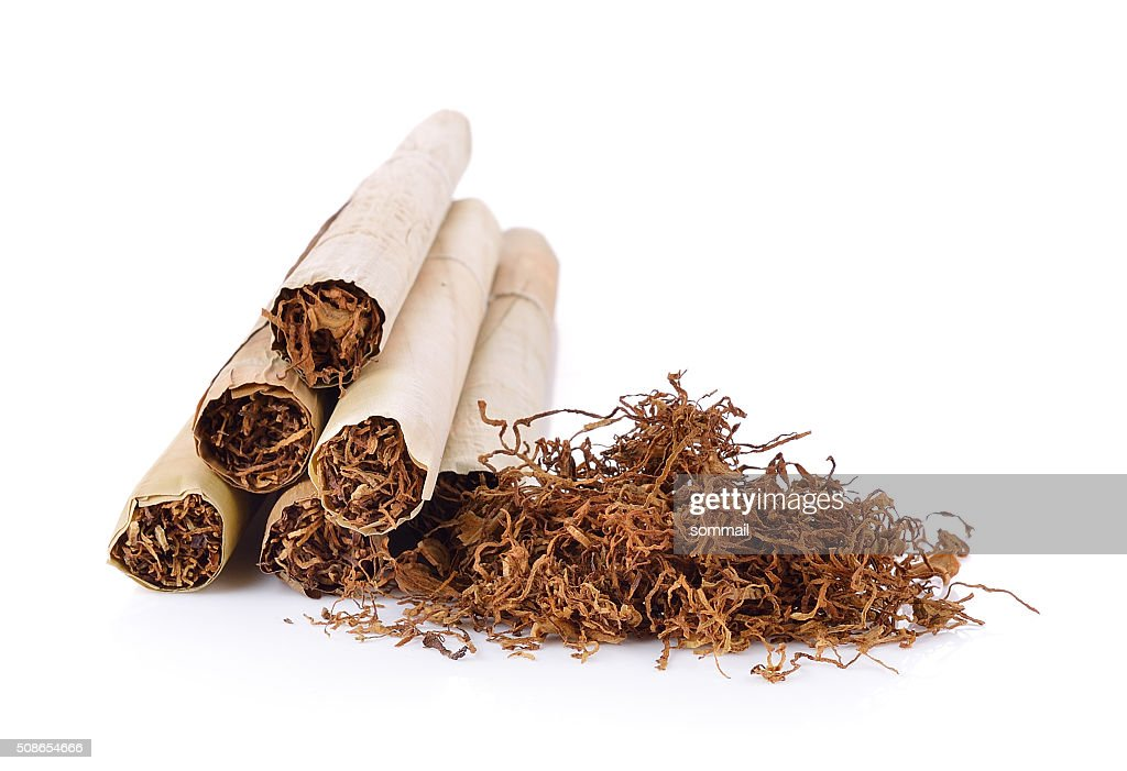 Tobacco pile and cigarette : Stock Photo