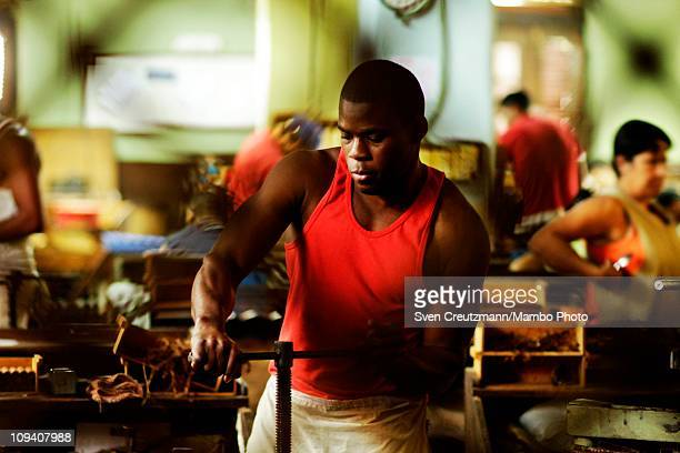 A tobacco worker tightens a cigar in the Partagas cigar factory in Old Havana during the 13th Habanos Festival on February 24 2011 in Havana Cuba The...
